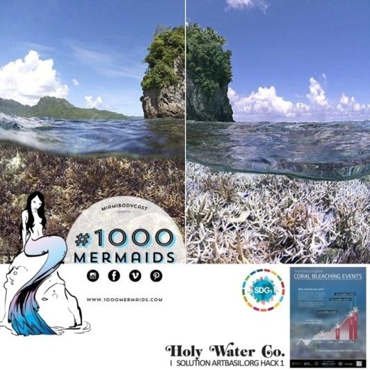 Post Card Coral Reef.jpg